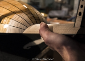 20161118_15473_Luthier_web